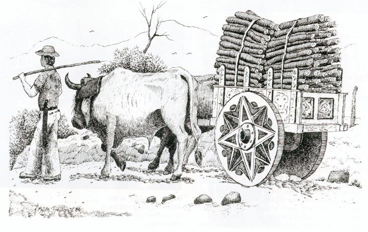 Costa rica charrettes images d 39 autrefois du 18 19 et - Charrette dessin ...