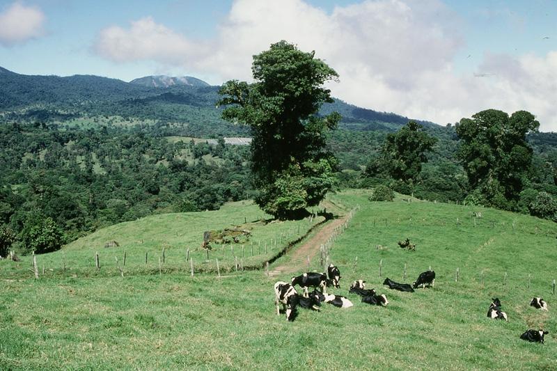 Index of /FRANCAIS/infos_touristiques_Costa_Rica/extensions/PHOTOS